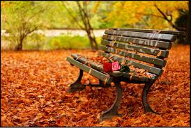 How about a date in autumn?